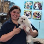 Dog Groomer Trish Cabral