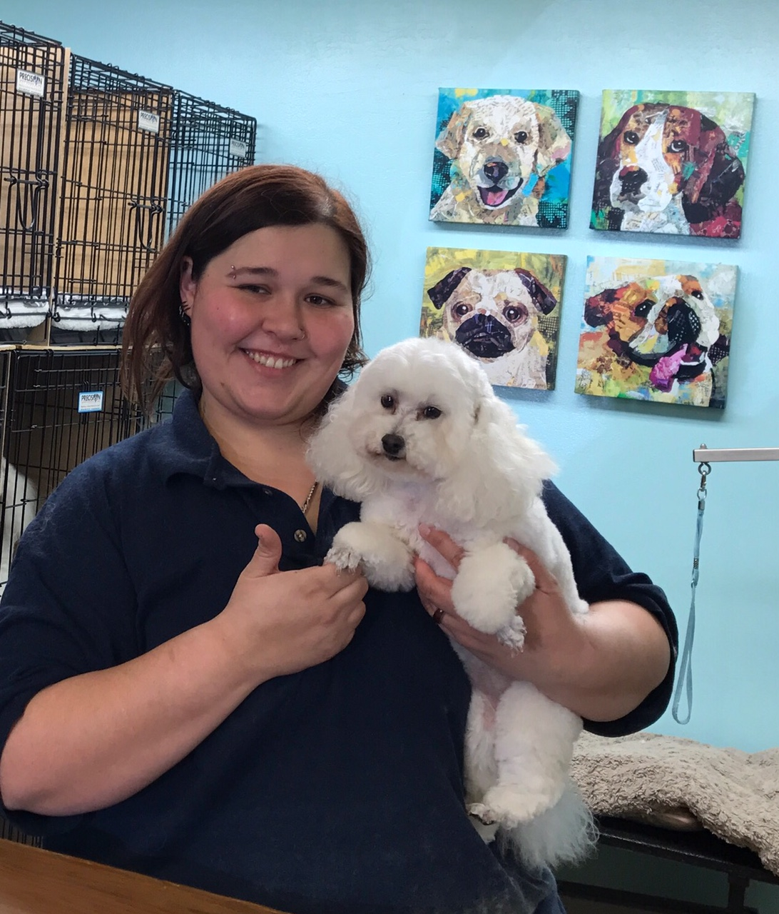 Best Dog Grooming Service Alameda See Spot Run Dogs