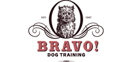 Bravo! Dog Training
