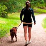 Be Aware of These 2 Dog Walking Hazards